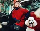 Chi Pu sang chảnh dắt cún cưng nghìn đô dạo phố ngày xuân