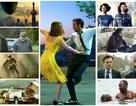 Oscar: 9 bí mật của những Phim hay nhất