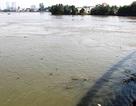 """Truy tìm """"nguồn gốc"""" chiếc chân người trôi trên sông Đồng Nai"""
