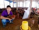 Bình Định: Thanh niên nuôi gà nhận giải thưởng Lương Định Của
