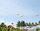Nhiều hoạt động văn hóa - du lịch đặc sắc trong dịp Festival Di sản Quảng Nam 2017