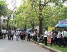 Hơn 1.500 sinh viên Đại học Khoa học Huế hào hứng tìm việc làm