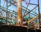 Thủ tướng chỉ đạo kiểm tra, làm rõ vụ tàu vỏ thép vừa đóng đã rỉ sét