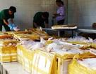 Vận chuyển 3 tấn chim cút lậu, tài xế gợi ý chi 40 triệu đồng để được bỏ qua