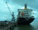 Đề xuất đổ 439.000 m3 bùn thải xuống biển Quy Nhơn