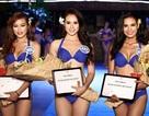 """ĐBQH Dương Trung Quốc: """"Các cuộc thi hoa hậu chỉ mang tính giải trí"""""""