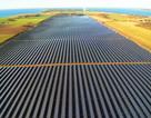 Hơn 1,1 nghìn tỷ đồng đầu tư dự án nhà máy điện mặt trời Cát Hiệp