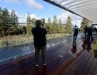 Trụ sở Apple Park chính thức mở cửa cho khách tới tham quan