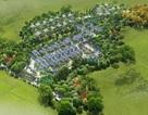 Green Oasis Villas- Tiềm năng sinh lời không giới hạn