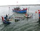 Đắm tàu cá, 6 ngư dân được cứu sống