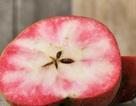 """Mê mẩn loại táo Mỹ lạ...""""xanh vỏ - hồng lòng"""" siêu dễ thương"""