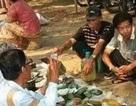 Choáng: Ngọc phỉ thúy thô ở Myanmar bán đổ đống như rau ngoài chợ