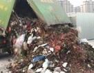 Bới 13 tấn rác, tìm được vật quý 380 triệu đồng