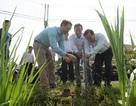 """Thêm một công trình nước sạch giúp cải thiện đời sống người dân vùng """"khát"""""""