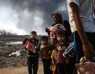 """100.000 người phải làm """"lá chắn sống"""" cho IS ở Mosul"""