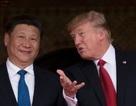 Doanh nghiệp APEC chờ màn đối thoại đỉnh cao của ông Donald Trump và ông Tập Cận Bình