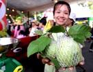 Mưa và lễ cưới Nam bộ xuất hiện trong buổi khai mạc Lễ hội trái cây Nam bộ 2017