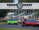 Mãn nhãn với dàn xe hội ngộ trong Goodwood Festival of Speed 2017