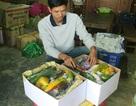 Hộp quà từ rau củ quả Đà Lạt hút hàng dịp Tết