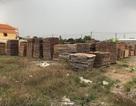 Ba công ty tranh chấp bãi gỗ, cả khu dân cư chịu thiệt