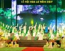 Ninh Bình: Hàng nghìn người dự lễ khai hội Hoa Lư năm 2017