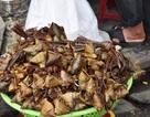 Bánh ú tro đắt hàng dịp Tết Đoan Ngọ