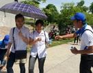 Điểm chuẩn trúng tuyển vào lớp 10 trường Chuyên và hệ Công lập tại Ninh Bình