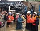 Các tỉnh vùng lũ cần hỗ trợ khẩn cấp gần 32.000 tấn gạo