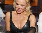 Pamela Anderson ăn vận bốc lửa giữa trời đông