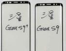 Lộ ảnh Samsung Galaxy S9/S9+ với khung viền mỏng hơn
