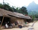 Nhiều huyện nghèo nhất nước không xin gạo cứu đói dịp Tết