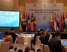 60 quan chức, học giả dự hội thảo ASEAN - Ấn Độ về Kinh tế biển xanh