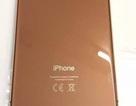 Video trên tay mô hình iPhone 8 Pro đầu tiên giá trên 10.000 USD