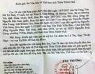 Yêu cầu Sở Văn hoá Thừa Thiên Huế giải quyết vụ mộ vợ vua Tự Đức