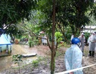 Nổ bom kinh hoàng 6 người chết ở Khánh Hòa