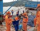 Cứu 19 ngư dân gặp nạn trên biển ngay trước bão số 7