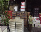 CSGT phát hiện, bắt giữ xe ô tô chở hơn 1 tấn hoa quả nhập lậu trong đêm