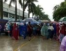 Thanh Hóa: Hàng nghìn công nhân tiếp tục đội mưa đình công