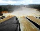 Phấp phỏng lo khi hồ thủy lợi lớn nhất tỉnh xả lũ