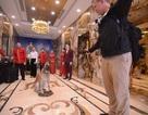 Chó nghiệp vụ Mỹ ở khách sạn dát vàng khi Tổng thống Trump tới Đà Nẵng