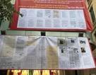 Kỳ án 194 Kim Mã: Cục thi hành án Hà Nội dựa vào đâu để quyết cưỡng chế nhà dân?