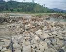 Đập tràn bị vỡ do mưa lũ, 80ha ruộng không có nước gieo sạ