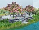 Sài Gòn sắp có phố hoa đào Nhật Bản