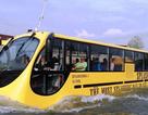 Háo hức chờ tuyến buýt đường sông đầu tiên ở Sài Gòn ra mắt