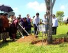 Đoàn đại biểu nữ Quốc hội Việt Nam và Lào làm việc với tỉnh Quảng Nam