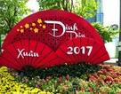 Ngắm đường hoa Nguyễn Huệ rực rỡ trước giờ khai hội