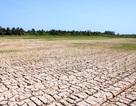 Chuyển dịch cơ cấu sản xuất để thích ứng với biến đổi khí hậu