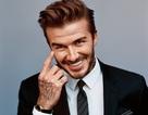 Phát hoảng với tạo hình xấu xí của David Beckham trong phim mới