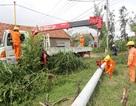 Ngành điện huy động tổng lực khắc phục hậu quả bão, lũ