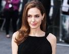 """Angelina Jolie quay trở lại với công việc để… """"kiếm tiền nuôi con"""""""